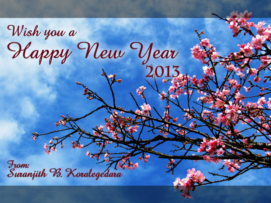 wish you all a happy new year 2013