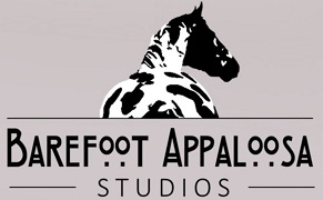 Barefoot Appaloosa (Facebook Studio)