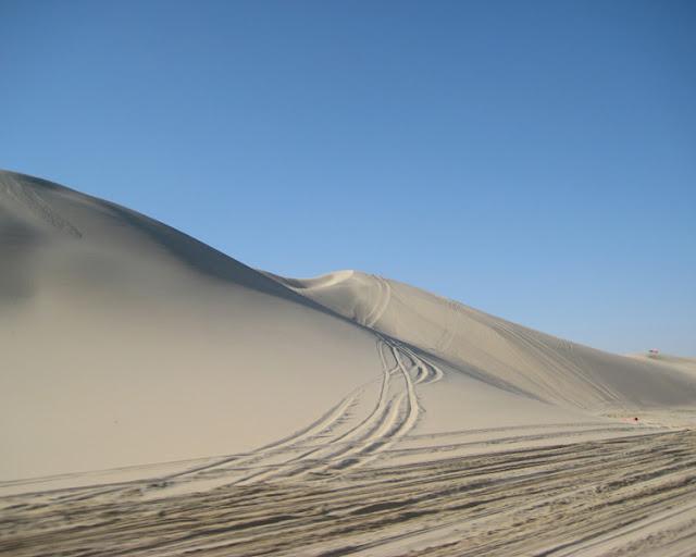Desert Safari - Qatar