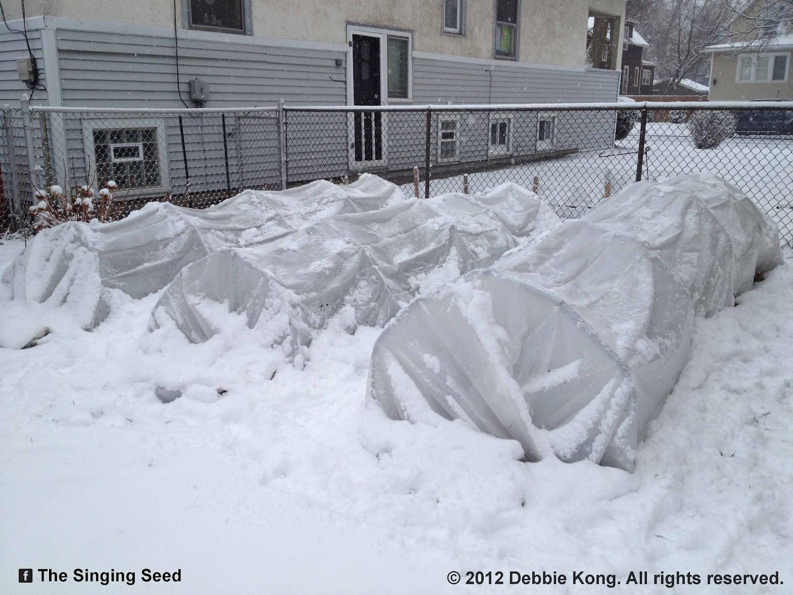 green roof growers winter garden trial