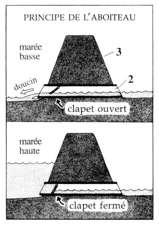 salt wedge diagram  salt  free engine image for user