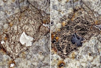 Студийные фотографии Челябинского метеорита «Чебаркуль»