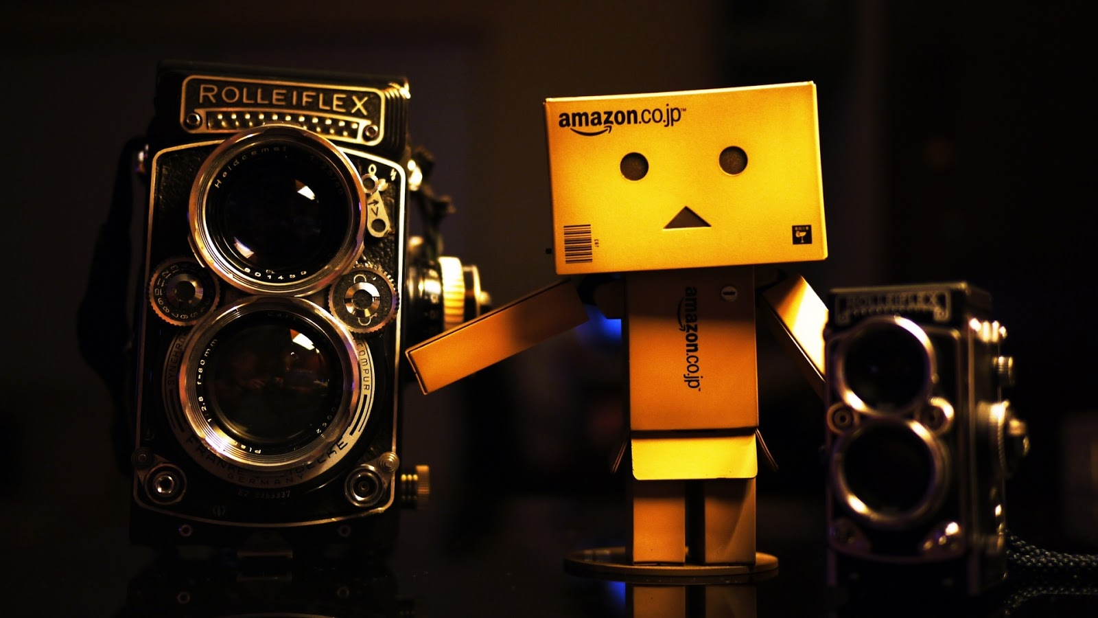Danbo And Rolleiflex