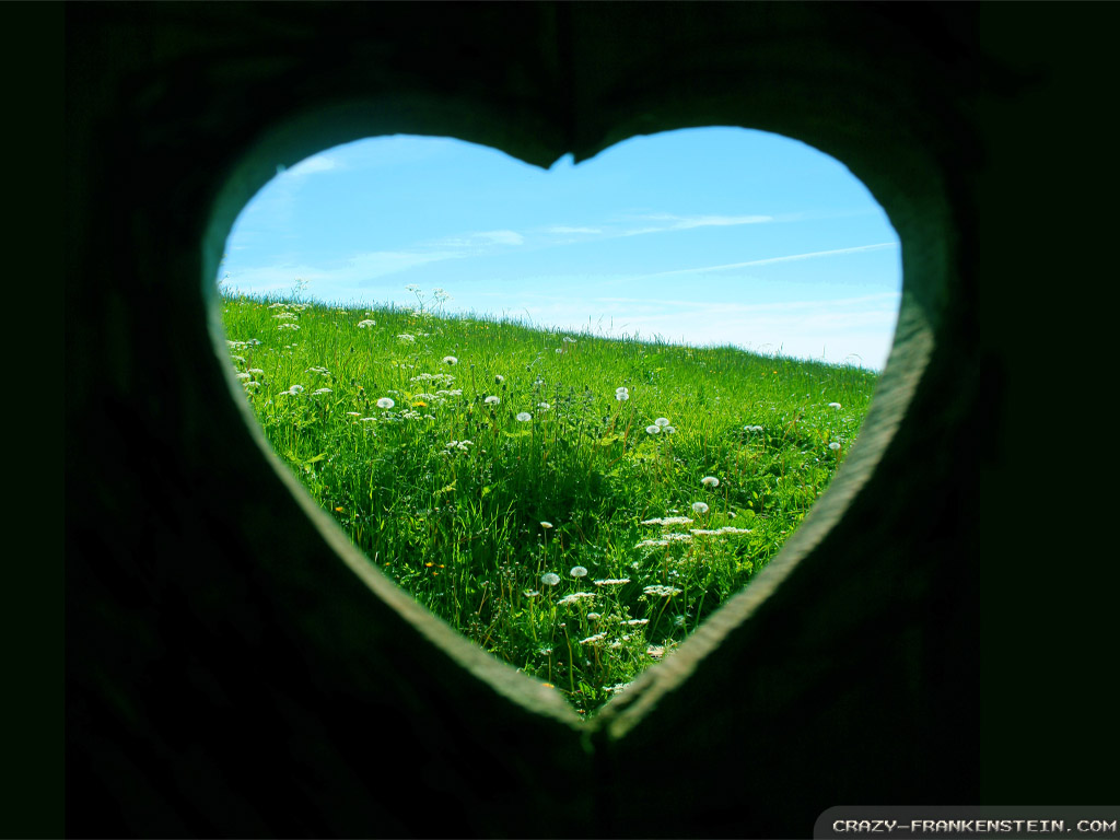 Love Nature Wallpaper Desktop : HD Widescreen Backgrounds Wallpapers: Love Wallpaper Backgrounds Desktop Backgrounds