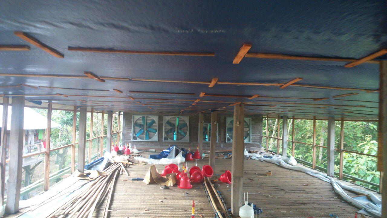 Image Result For Konstruksi Kandang Ayam Petelur