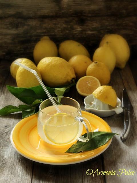 Benefici e Utilizzi del Limone di Armonia Paleo