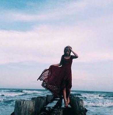 Taylor Swift es acusada de perturbar el hábitat de aves en su nuevo vídeo.