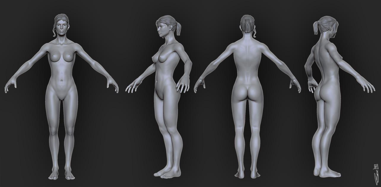 female anatomy study *NSFW* — polycount