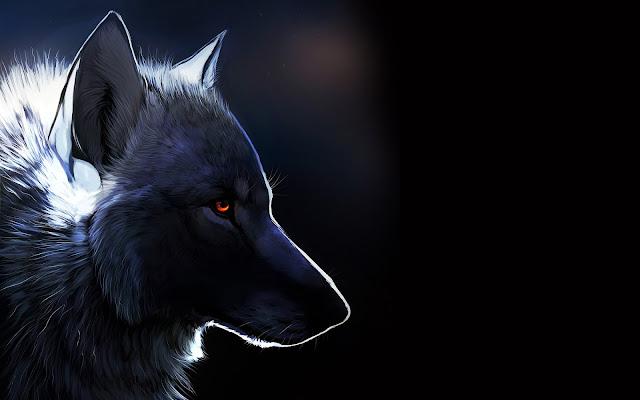 Lobo con Ojos Color Ámbar Fondos HD de Animales