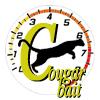 2k: Cougar Bait: 1981 Mercury Cougar XR7 Coupe