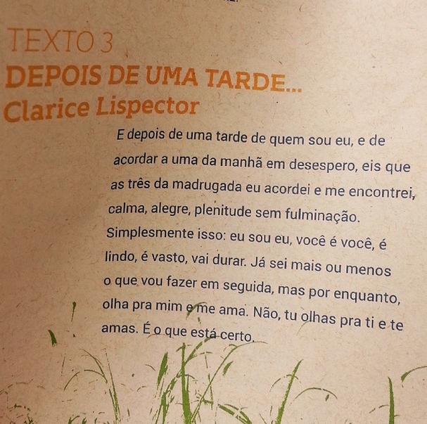 Maria Bethânia gravará obra de Clarice Lispector