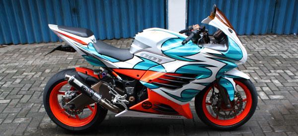 Kawasaki Ninja 250R title=