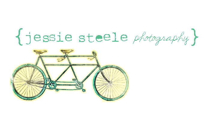jessie steele photography