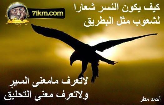 2017 افضل الصور عليها حكم و اقوال مأثورة Best wise words  ملتقى البدر الفكري