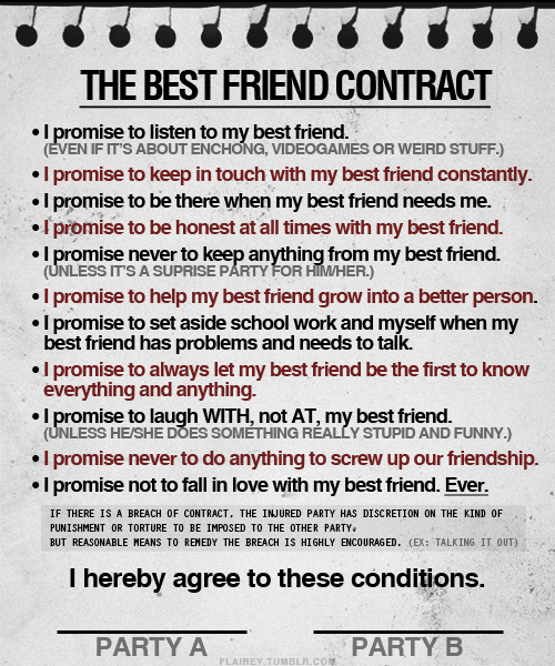 best quotes and lines about friendship