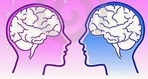 Diferencias entre cerebro masculino y femenino