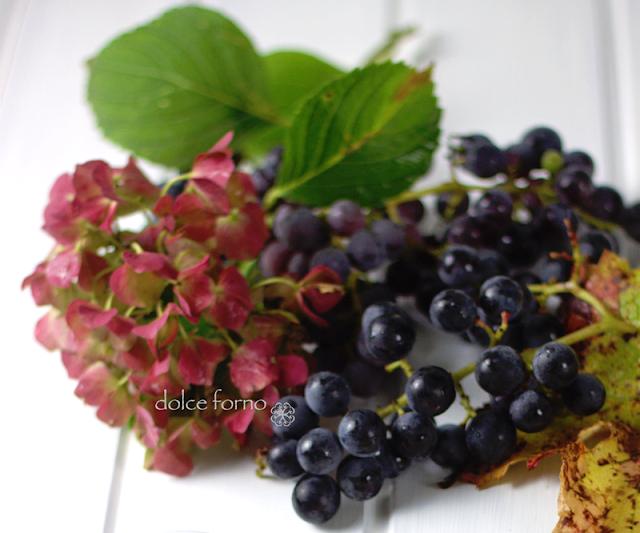 gelatina d'uva