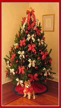 Arboles de navidad color rojo parte 2 - Arbol de navidad adornado ...