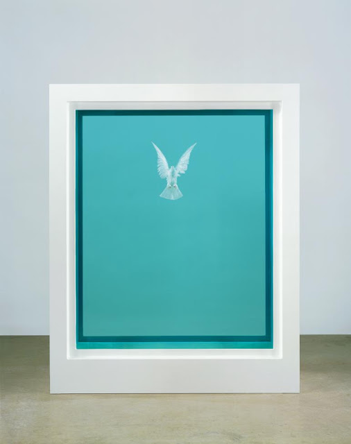 White Dove preserved in blue formaldahyde hovering within white cabinet