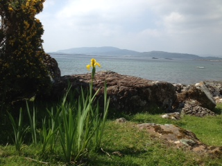 Yellow flag on Mull
