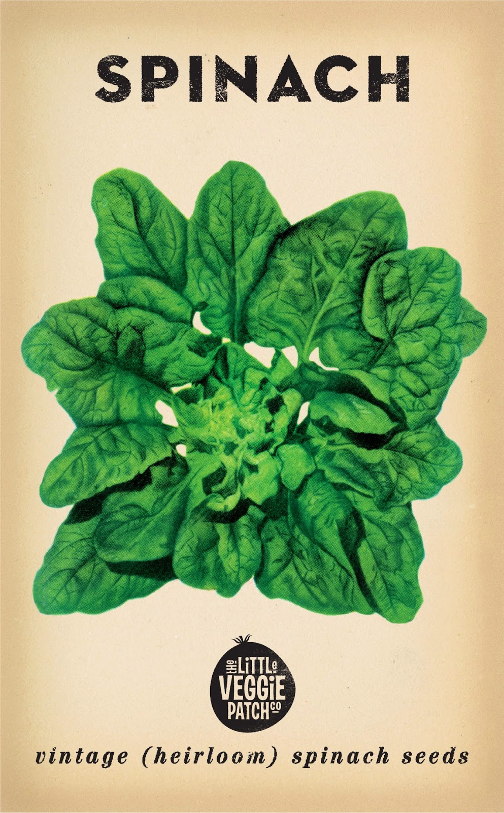 http://www.mrgift.com.au/the-little-veggie-patch-co/bloomsdale-spinach-seeds