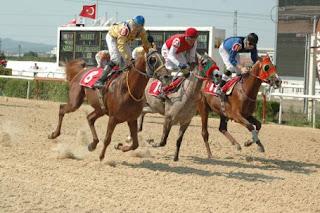 16.09.2013 Bursa at yarışı Tahminleri