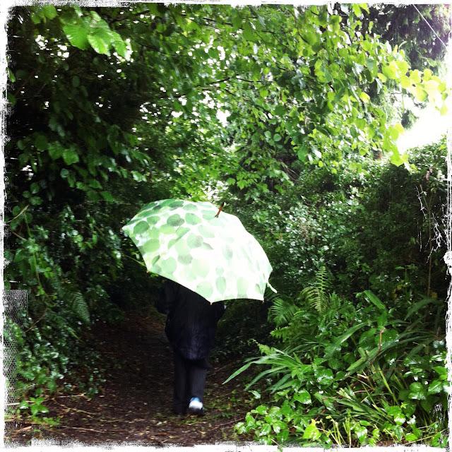 Sunlight through leaves umbrella by Ella Doran