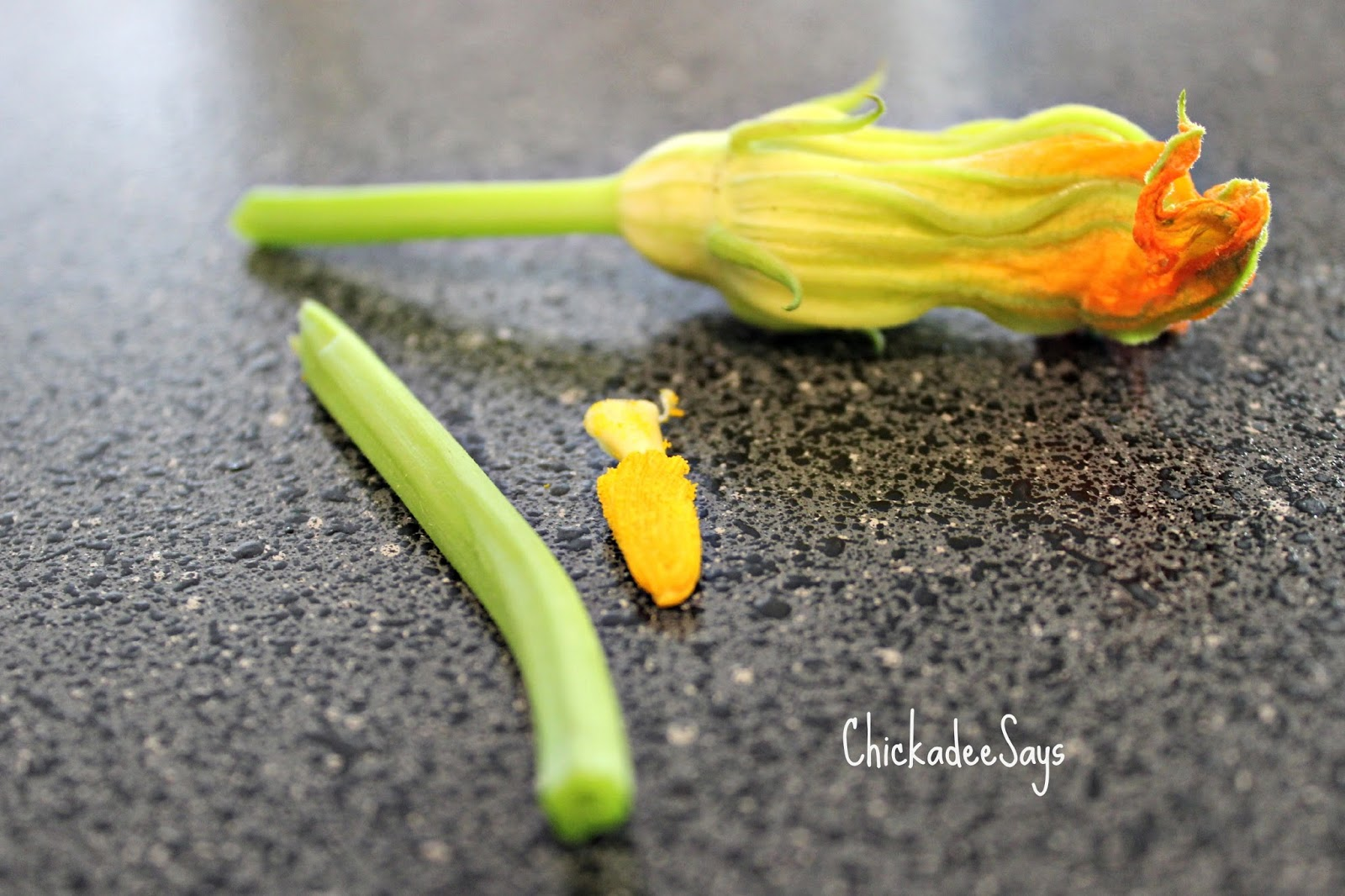 ... Meatless Monday: Squash Blossoms Stuffed with Honey-Cashew Goat Cheese