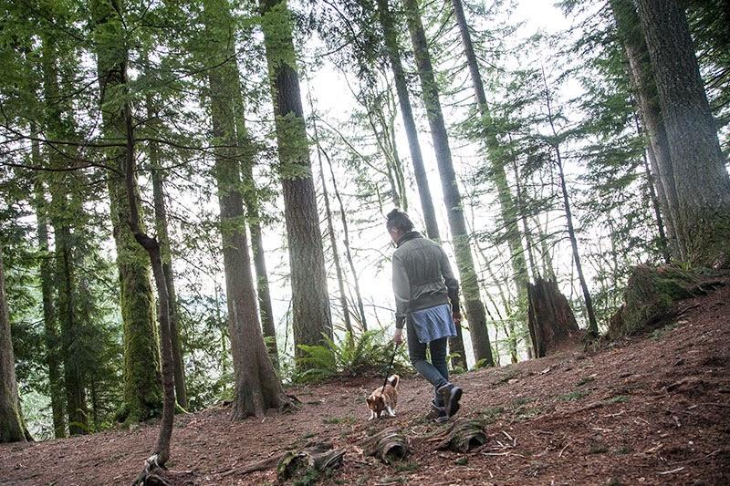 Umi the corgi and KT Eng at Twin Falls Hike in Washington State