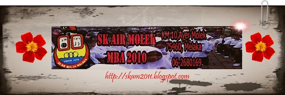 SKAM2011