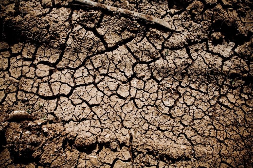 http://www.agrimoney.com/news/eu-grain-yields-to-fall-despite-positive-conditions--8105.html