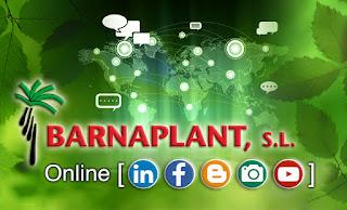 Barnaplant en las redes sociales