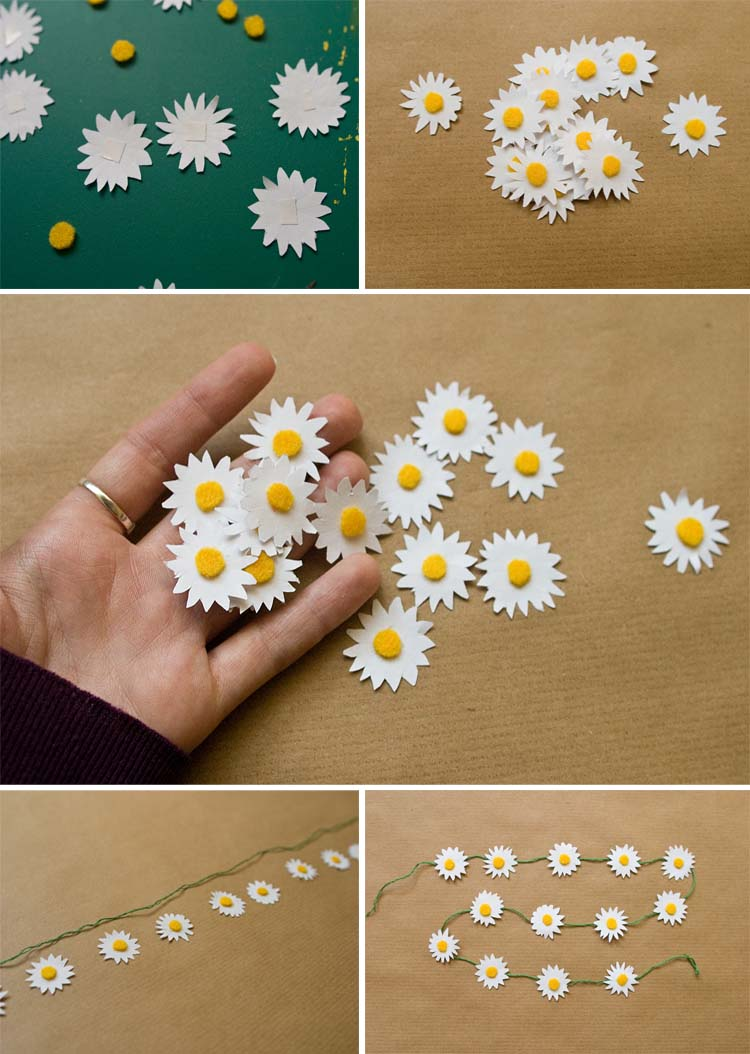 paper daisies Paper daisy, bracteantha (xerochrysum) perennial everlasting daisies flower for more than 2 years and are the pick of the bunch for bushy native daisies.