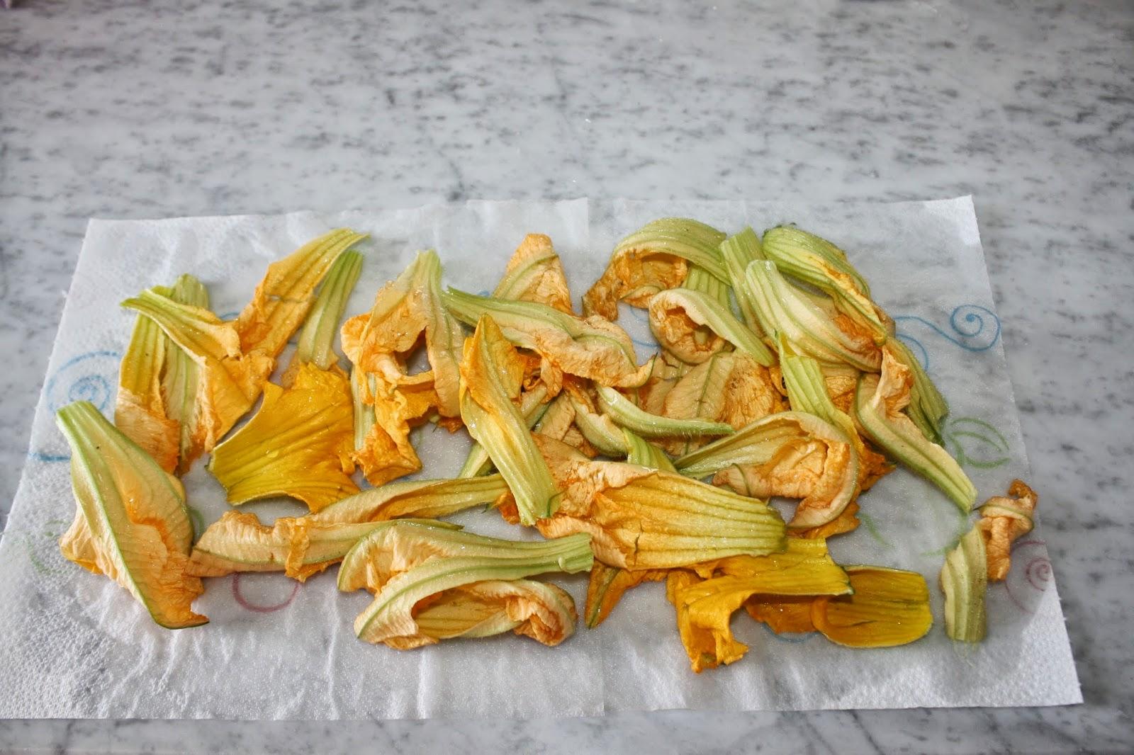 ricette fiori di zucca