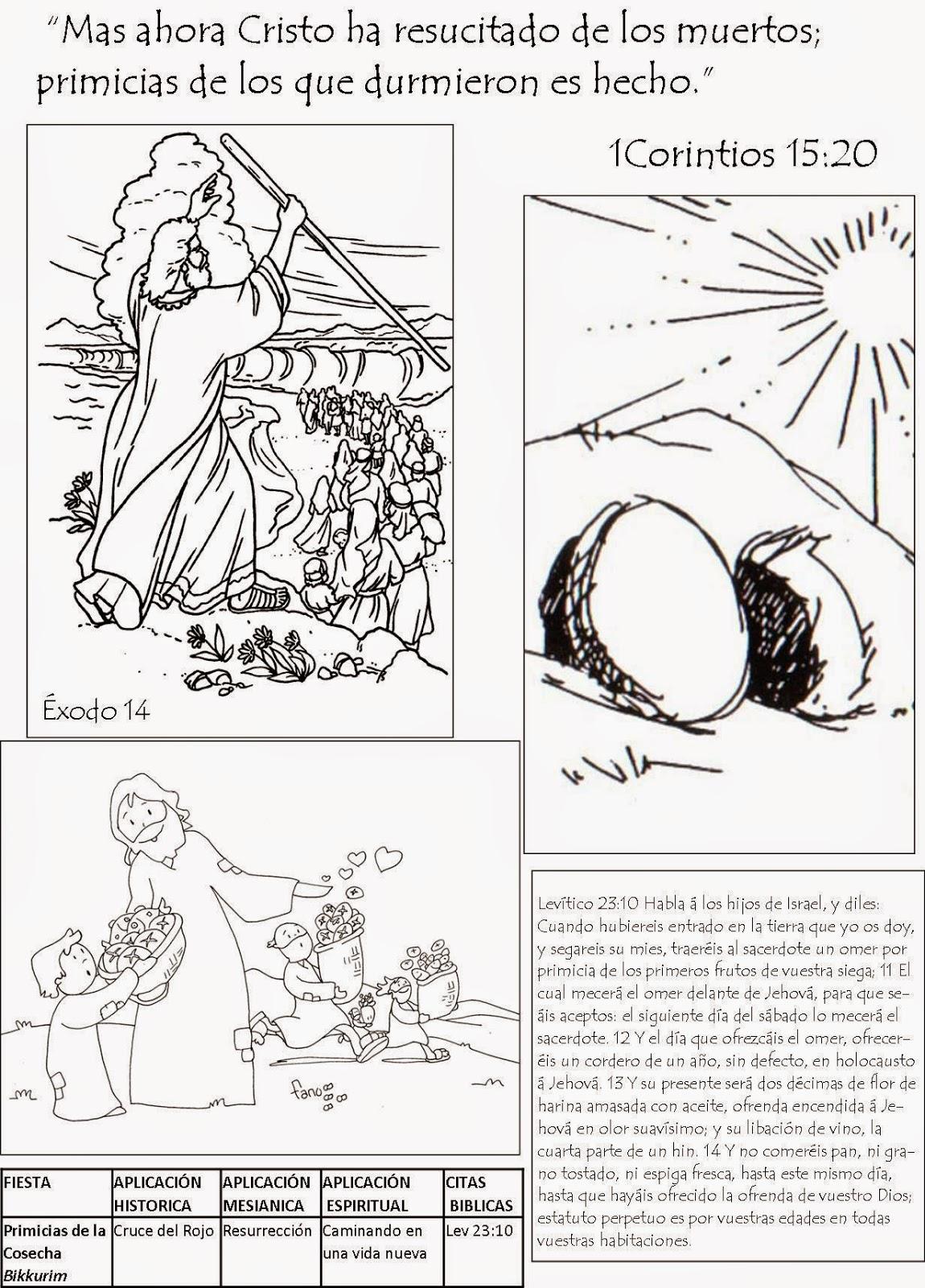 Fantástico Tabernáculo Para Colorear Composición - Dibujos Para ...