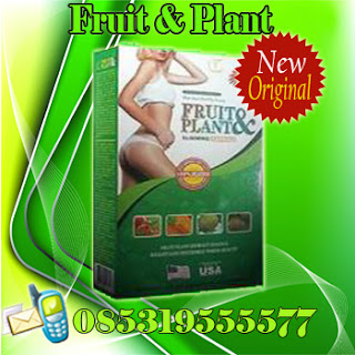 OBAT PELANGSING BADAN FRUIT AND PLANT HERBAL