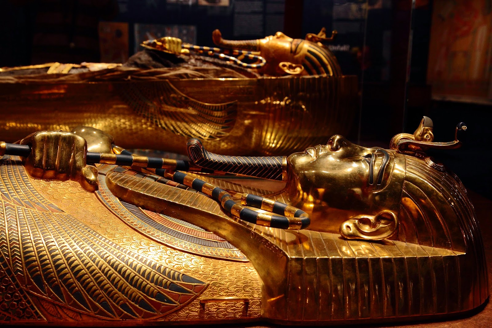 the careerist 5 reasons to see the discovery of king tut at union station