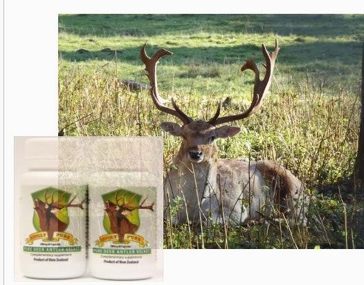 Deer antler velvet