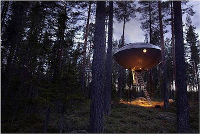UFO treehouse In Sweden Seen On www.coolpicturegallery.us