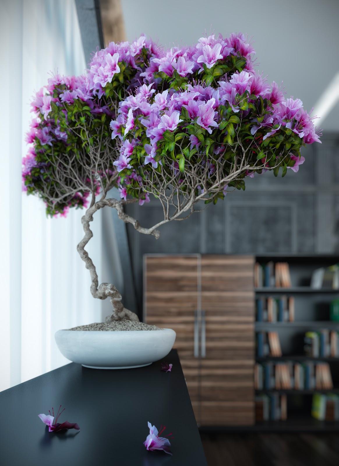 Дизайн комнатных цветов фото