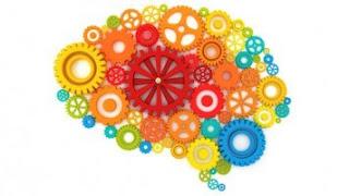 Cara Meningkatkan Kinerja Otak