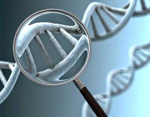 El test de ADN que comprueba si tienes enfermedades hereditarias