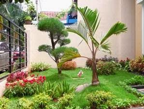 Tips Menata Taman Rumah di Lahan Sempit