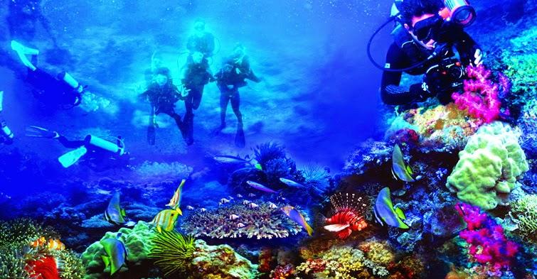 Pesona Objek Wisata Taman Laut Bunaken