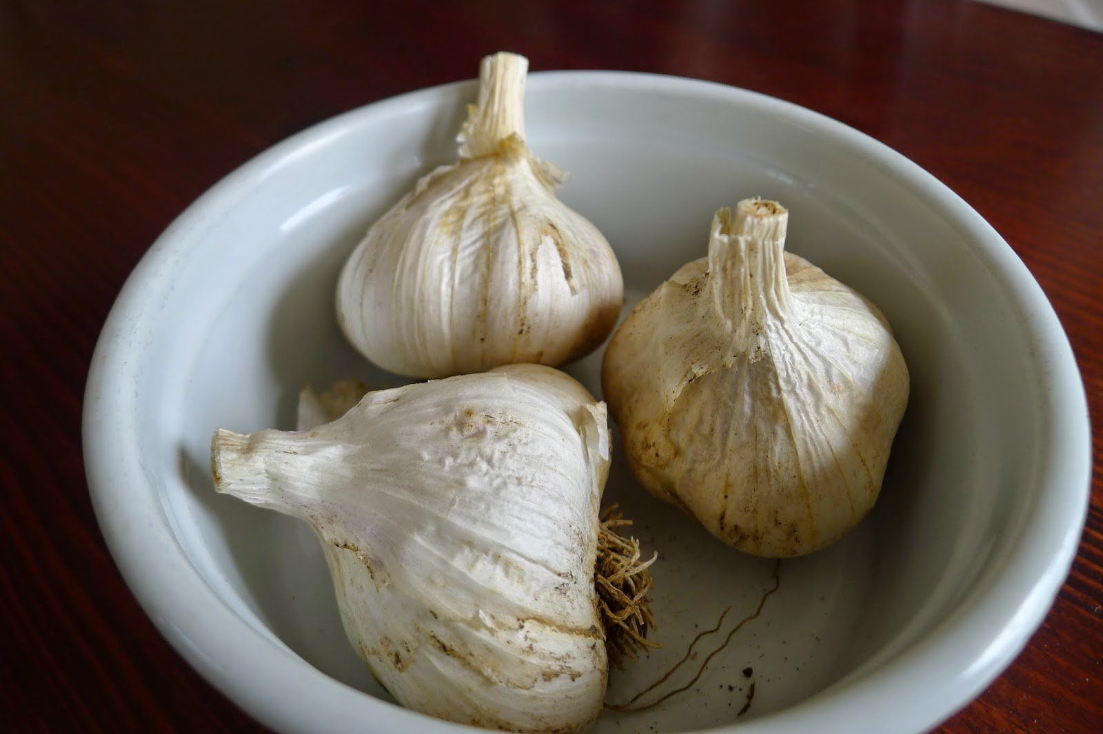 Saving garlic as seed garlic,  preserving, urban farming