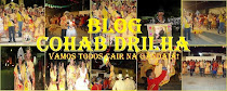 BLOG COHAB DRILHA 2010