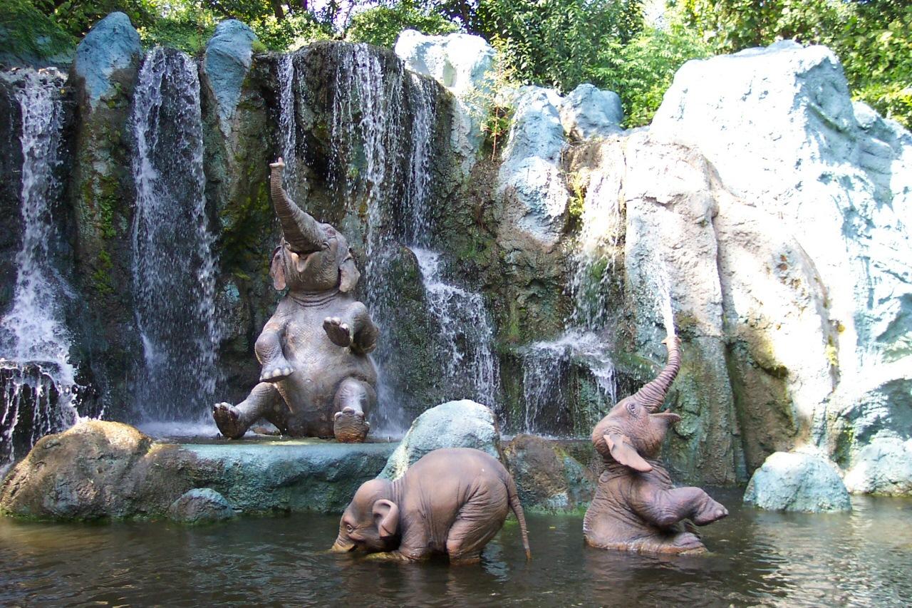 Video YouTube: Due Cuccioli di Elefante giocano con l'acqua in Piscina
