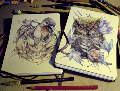 00-Marco-Mazzoni-Surreal-Animal-Drawings-www-designstack-co