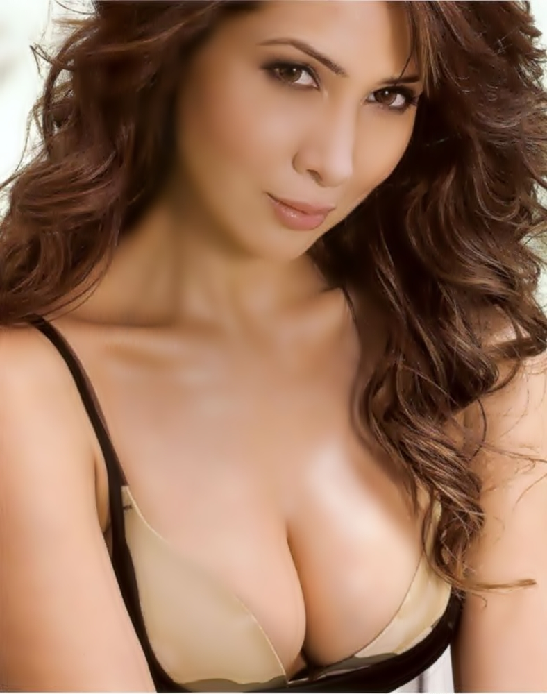 Spicy Heroines Kim Sharma Hot In Bikini