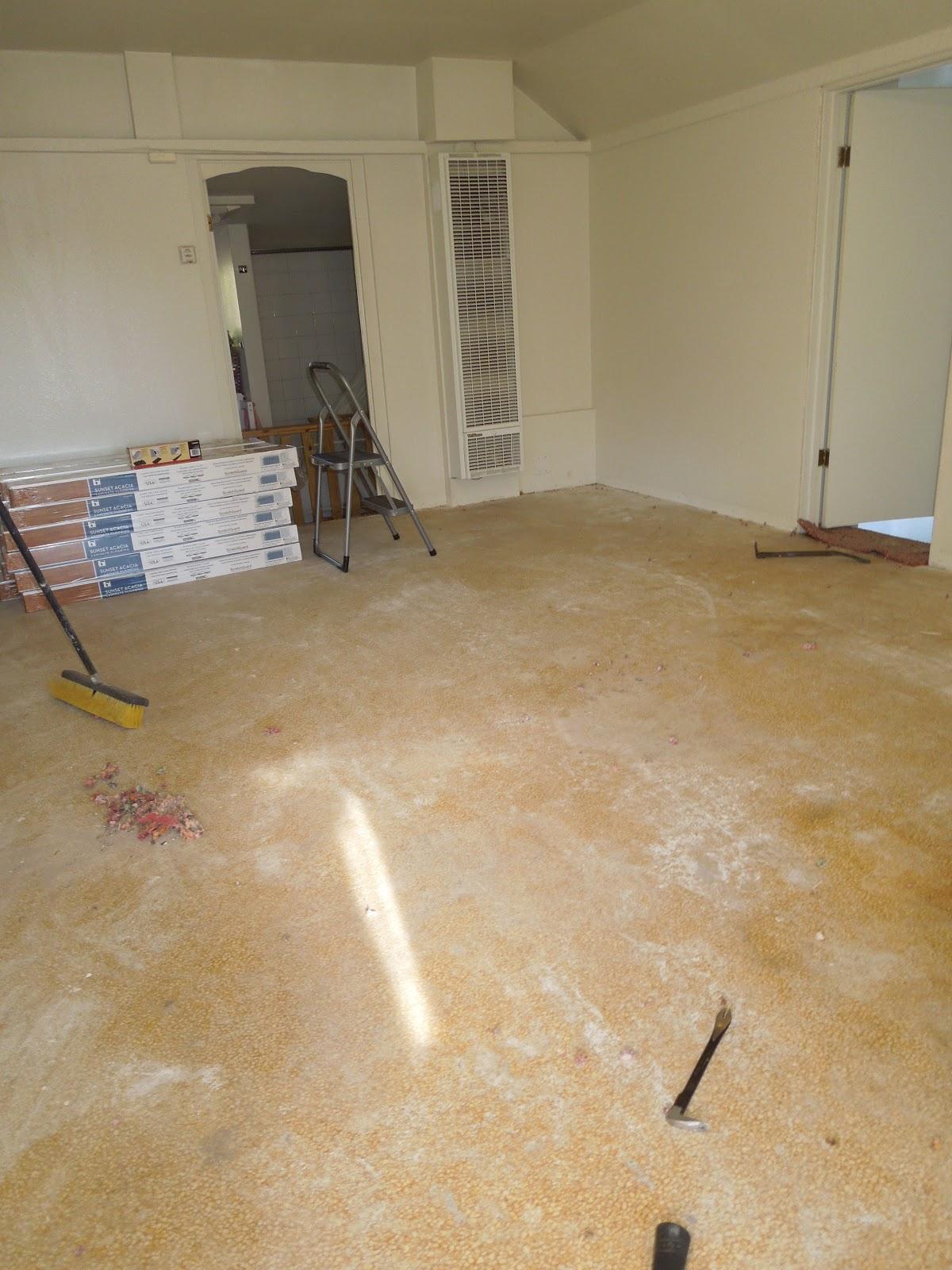 Laminate flooring much have laminate flooring laid - The basics of laying laminate flooring ...